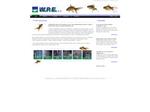 WPE website