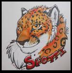Spotti Badge