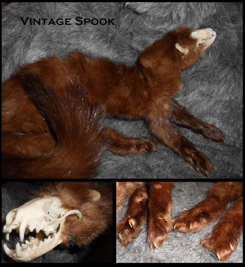 Vintage Spook by Sharpe19