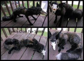 Farkla Cross Fox Spook by Sharpe19