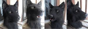 Black wolf extras