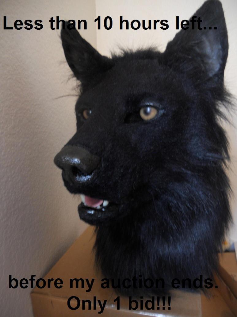 Black wolf furry - photo#27