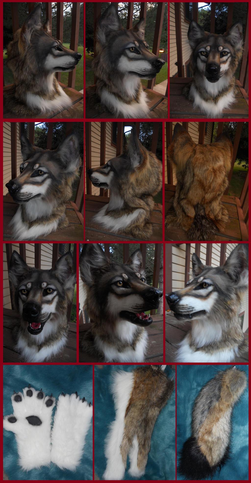 Teeth Wolf by Sharpe19