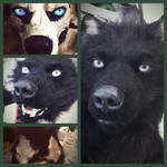 Black werewolf sneak peek