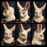 'Alice in Wonderland' white rabbit