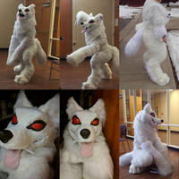 Wolfos cosplay up for offers!!