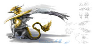 Dragon version 1