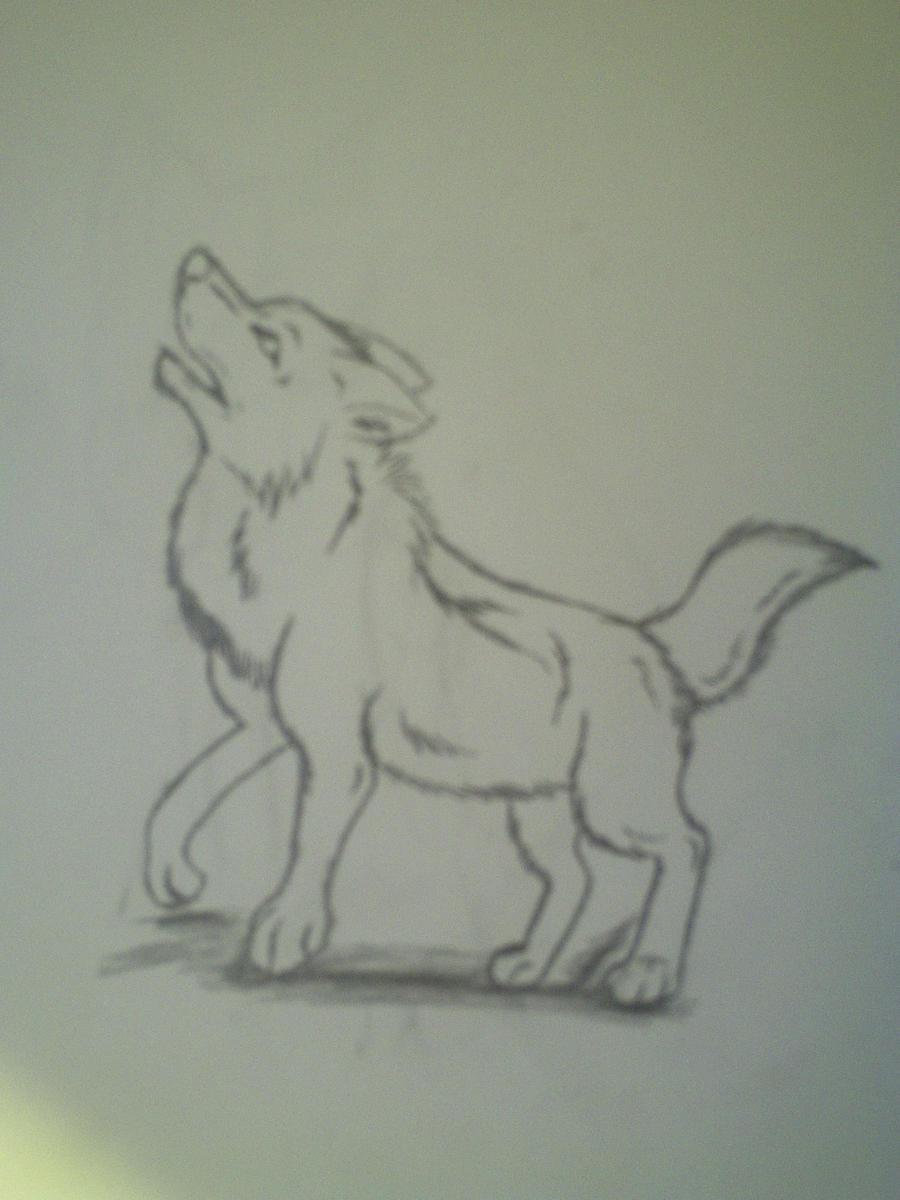 wolf howling sketch by wolfoffire58 on DeviantArt
