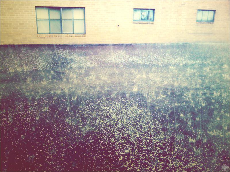 let it pour down by blkmtnstudio