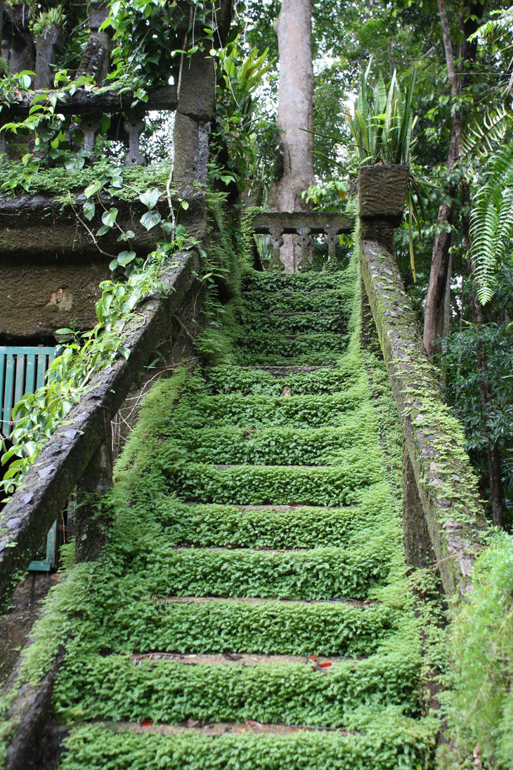 STOCK 010 - Overgrown Stairway by afira