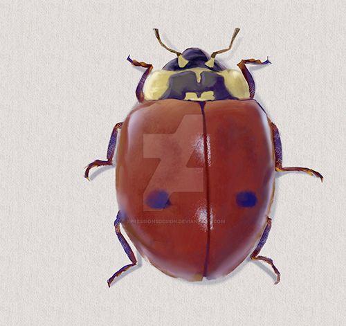 Ladybug Beetle by XpressionsDesign