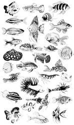 Fish (DDMarch) by Thalateya