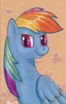 Rainbow Dash Moleskine