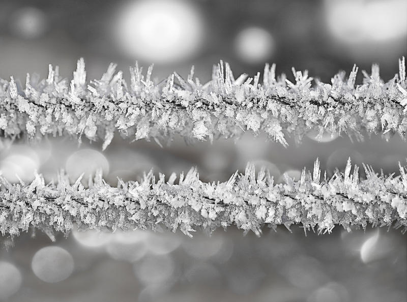 Frost Wire by artdejohn