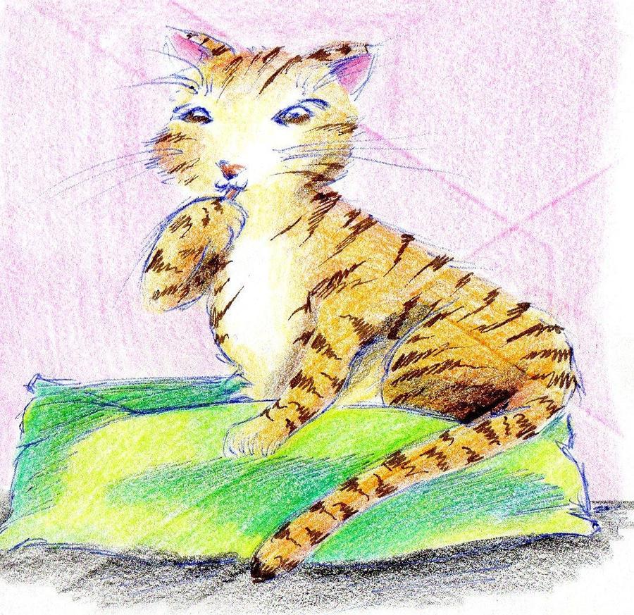 winter cat 1 by NanakoHarrison