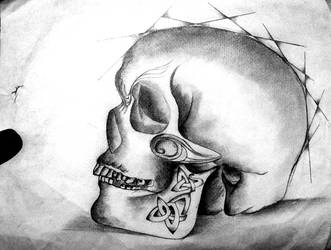 Skull by razorx2
