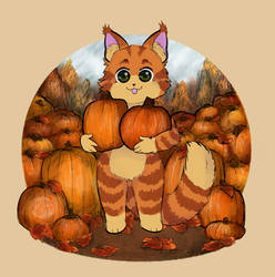 Pumpkin Patch Cat