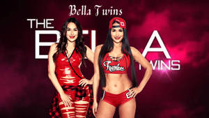 Bella Twins Wallpaper