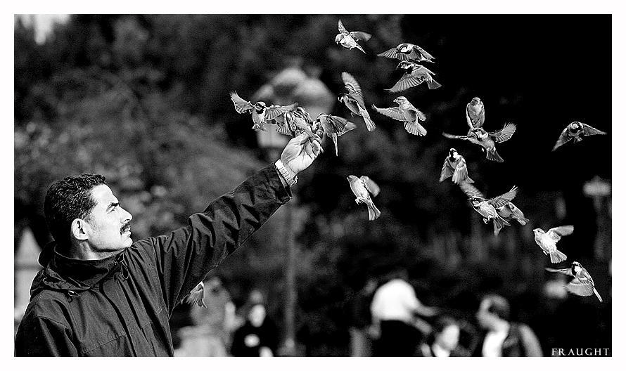 The Birdman by fraughtuk