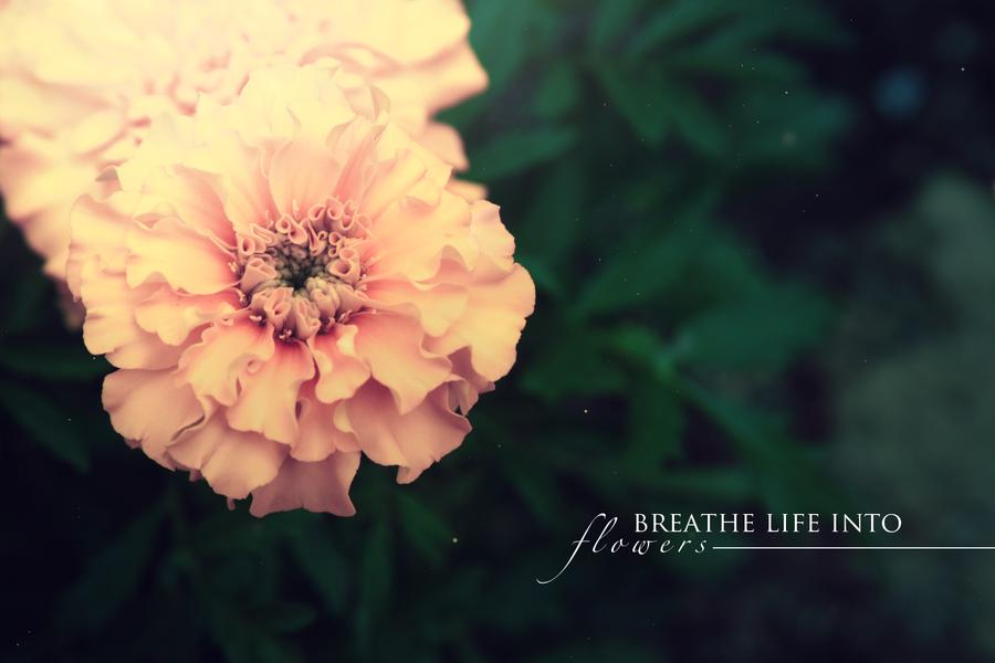 Breathe Life Into by xArtl3ssx