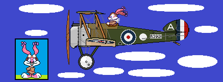 WW1-Tiny Toons: Babs Bunny by denmark137