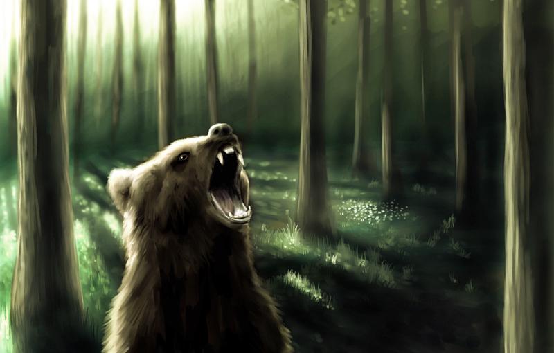 Bear by OSW