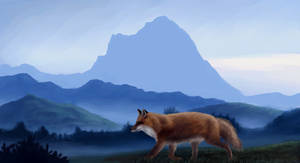 Red Fox in Norwegian landscape