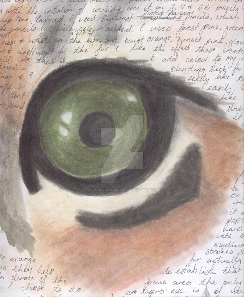 HSC Snippets - Tiger Eye by LindseyHodder