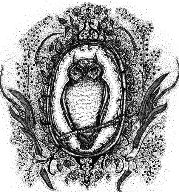 Owl by FunnyLittleBirds