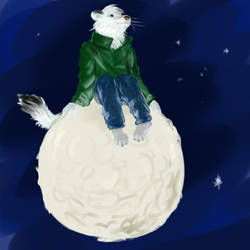 On the moon by ierf