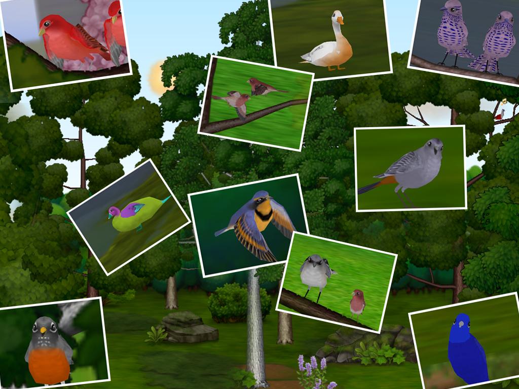 Snapshot Adventures Desktop