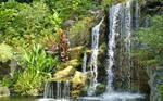 Waterfall at the Arboretum