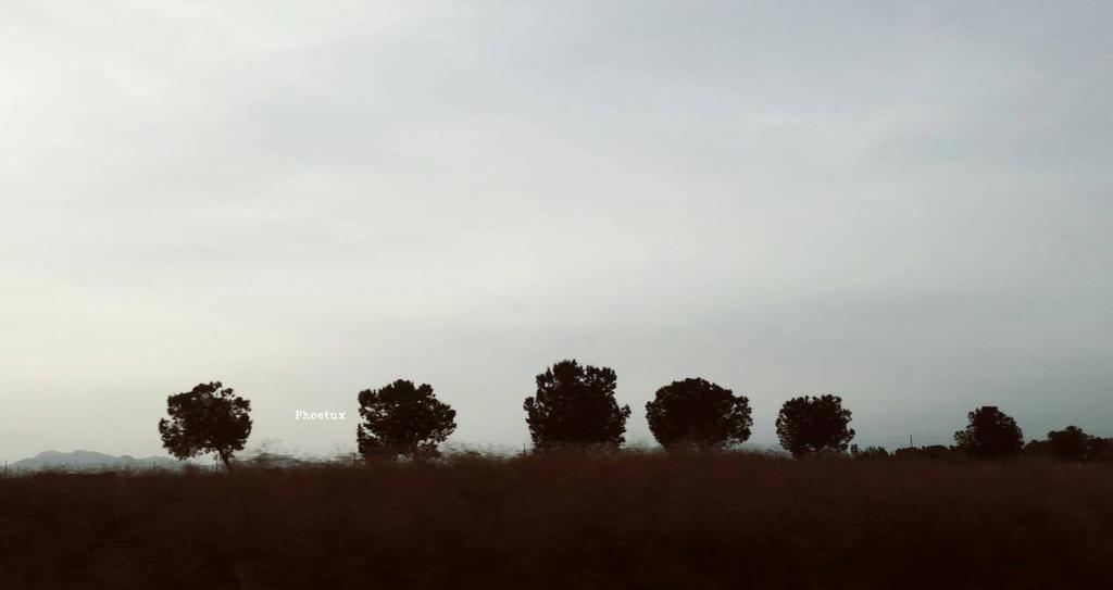 Road of Quietness by ArgonPlasma