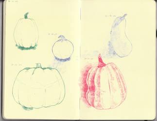 Pumpkins by Lambofthemoon