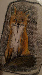 Fox Doodle by Jakkie03