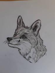 Little doodle by Jakkie03