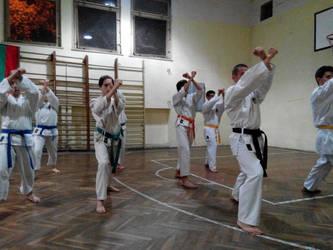 20140915 karate shotokon training by LenaMorgue90