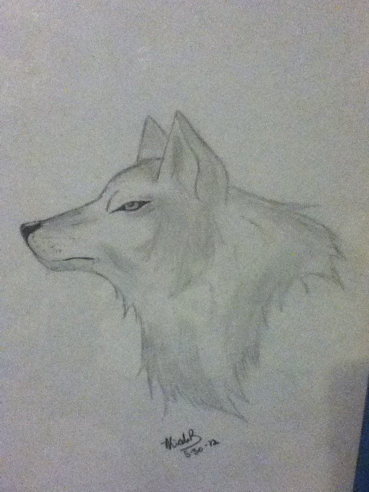 wolf head by 01whitewolf