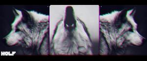 SofiaNoreen's Profile Picture