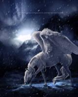 Eternal Refuge by aapex