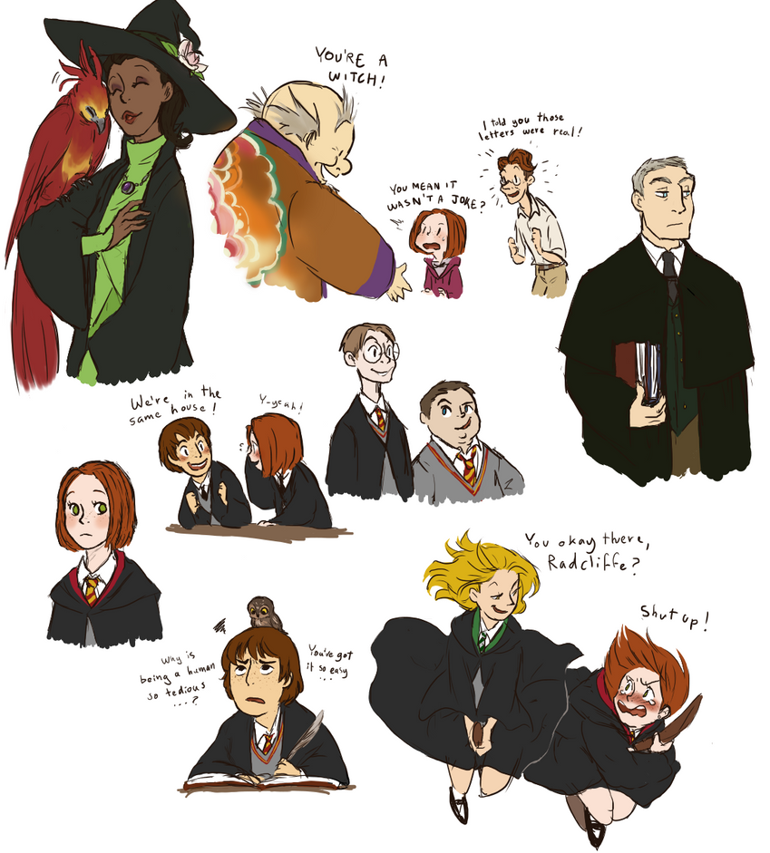 Harry potter sorting hat fanfiction