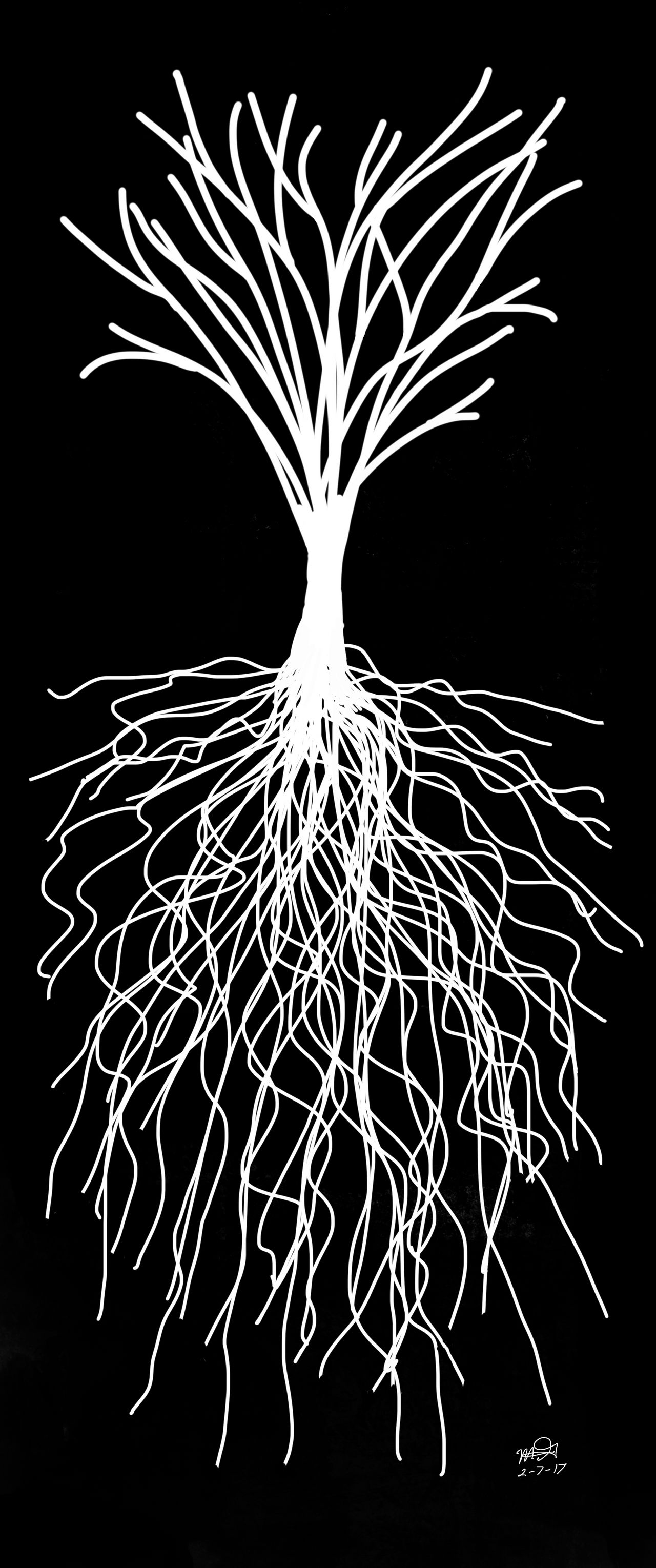 We all have our roots.