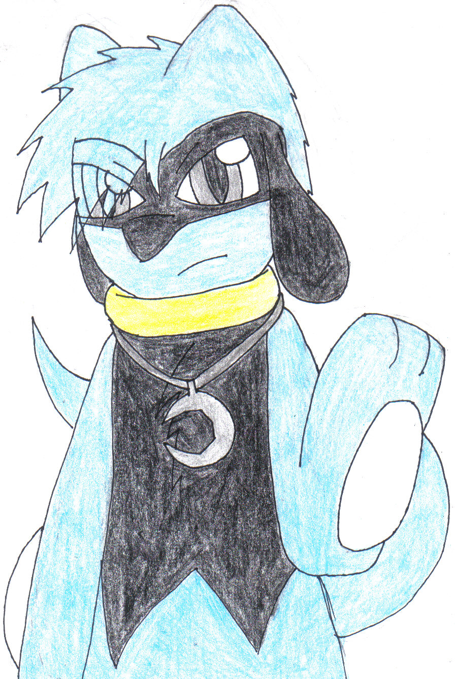Damon the riolu by SesshaXIII