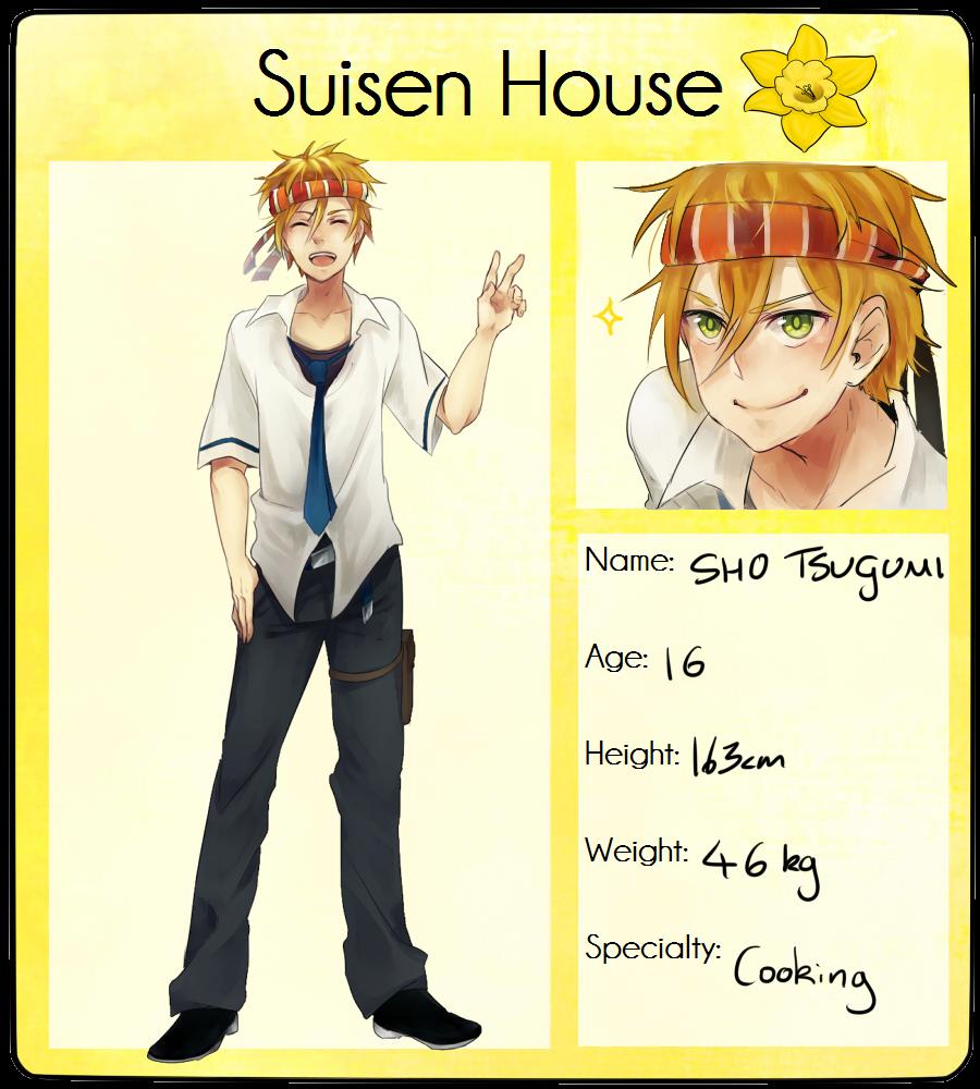 Hoshino: Sho by Shippa-chan