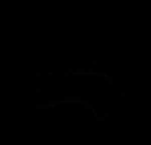 IBinked's Profile Picture