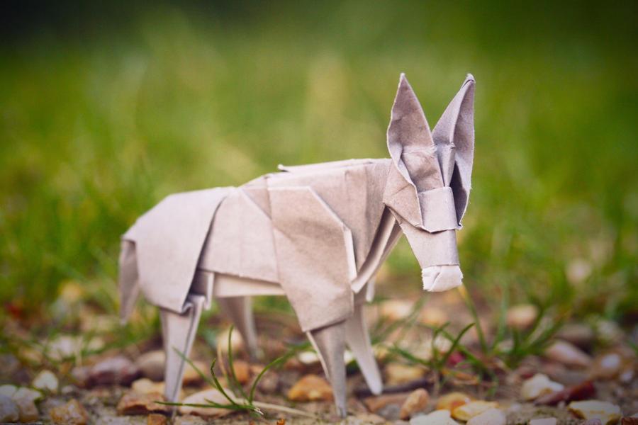 Little Donkey by synconi