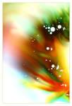 rainbow soaps
