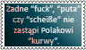 Polskie bluzgi by black-cat16-stamps