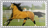 Horse colours: lightbrown by black-cat16-stamps