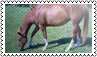 Horse colours: brown by black-cat16-stamps